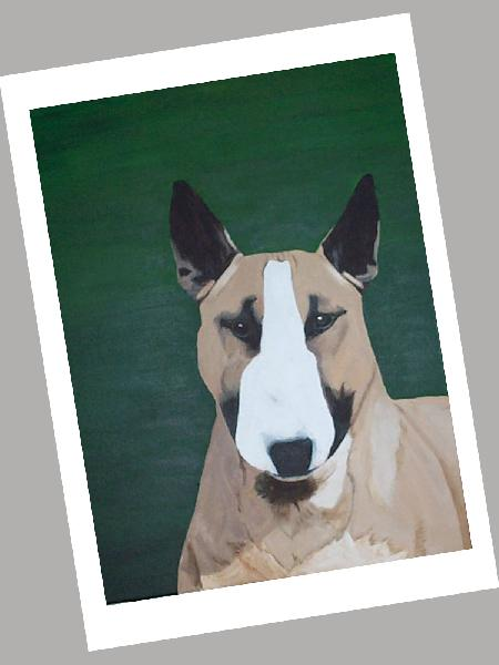 Colored Bull Terrier Card Set of 4