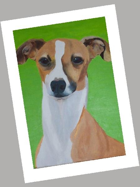 Italian Greyhound Card