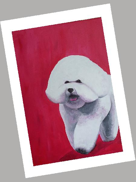Bichon Card Set of 4