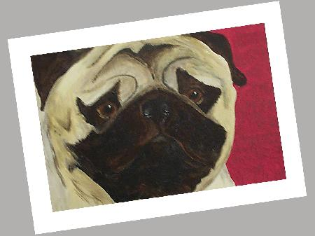 Pug Cards Set of 4