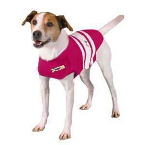 Thundershirt - Pink Rugby