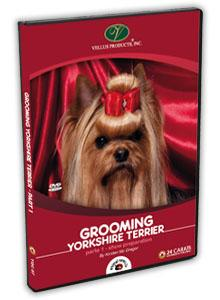Yorkshire Terrier Grooming Video part 1
