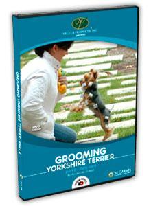 Yorkshire Terrier Grooming Video part 2