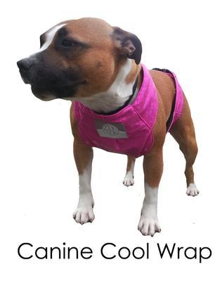 Zentek Canine Quick Wrap XLarge