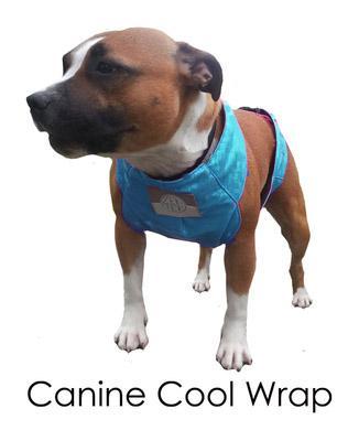 Zentek Canine Quick Wrap Large